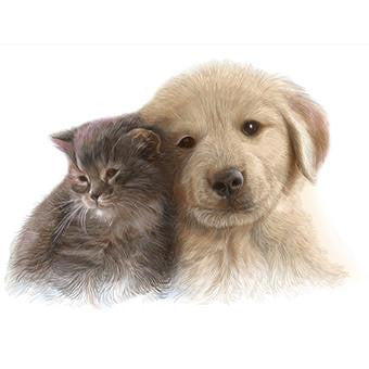 Kitten and puppy card
