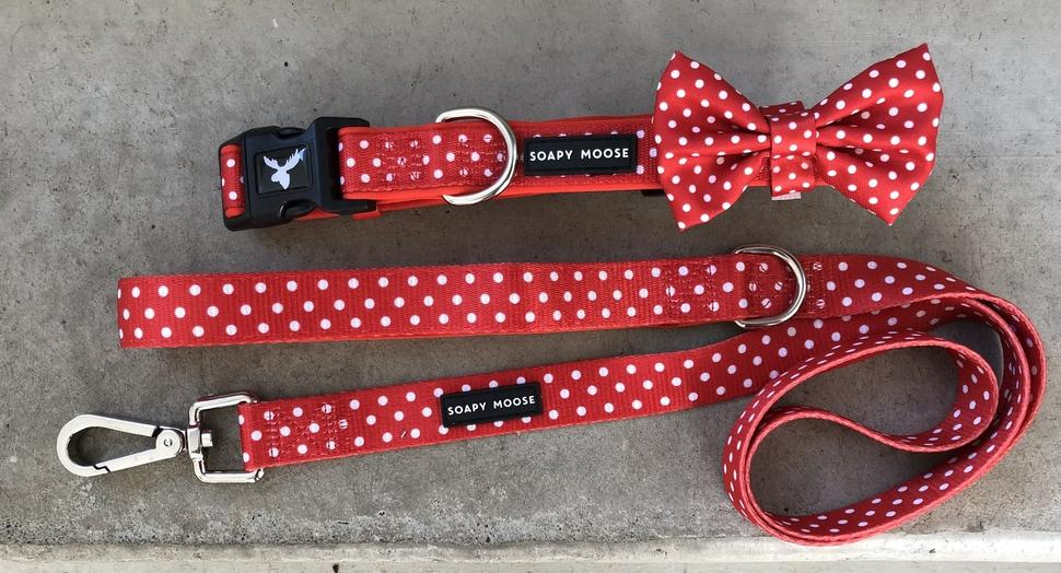 Soapy Moose Collars, Leads & Harnesses