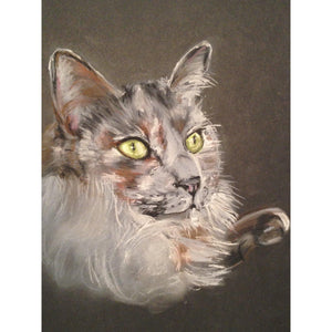 fine art original pastel animal portraits