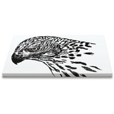 Horizontal Canvas - Gosh it's a Goshawk!