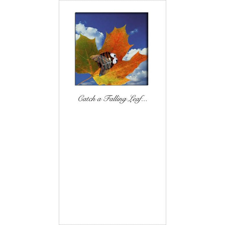Buggles Bee on Autumn Leaf Birthday Greeting Card 'Catch a Falling Leaf'