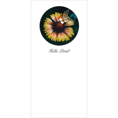 Buggles Bee on Yellow Flower Designer Cards