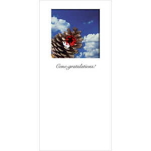 Buggles Ladybird on PineCone with Blue Sky 'Cone-gratulations!' greeting card