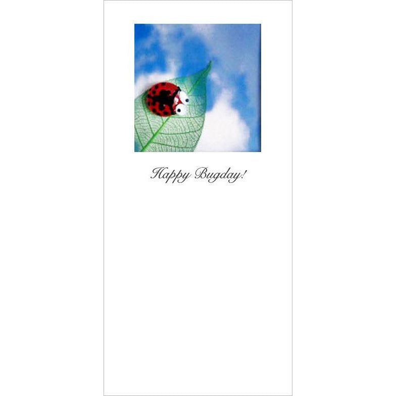 Buggles Ladybird on Leaf Greeting Card Happy Bugday!