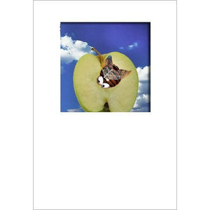 Buggles Bee on Apple Greeting Card A6 Size