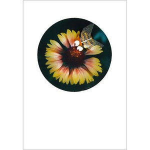 Buggles Bee on Yellow Flower Greeting Card