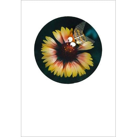 Buggles Bee on Yellow Flower Greeting Card 'Hello Petal!'