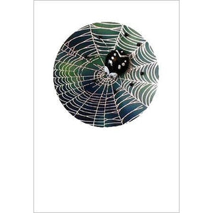 Buggles Spider on Web Greeting Card