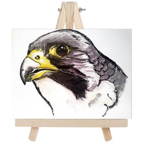 Falcon Fine Art Original