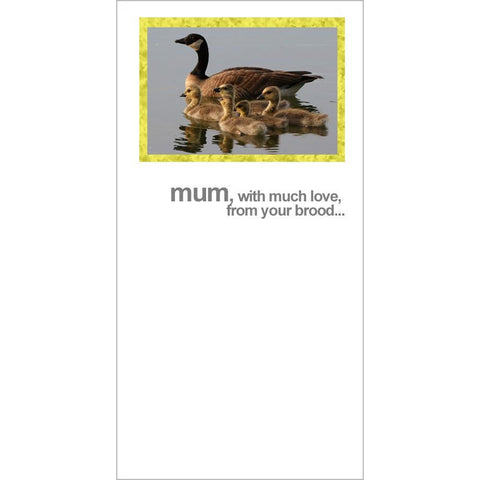 FotoFitz Ducky Mothers Day Card