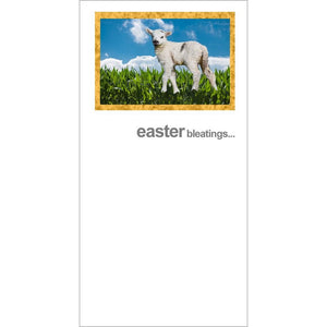 FotoFitz Easter Lamb Greeting Card