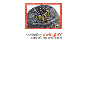 FotoFitz - Not Feeling Owlright - Owl Get Well Greeting Card