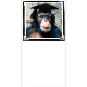 Foto Fitz Chimp Graduation Greeting Card