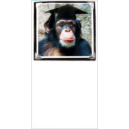 FotoFitz Chimp Graduation - CongratuAPEtions
