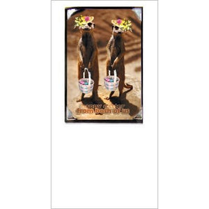 FotoFitz Easter Meerkats Greeting Card