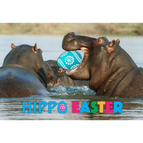 Hippo Easter Hippopotamus Easter Greeting Card