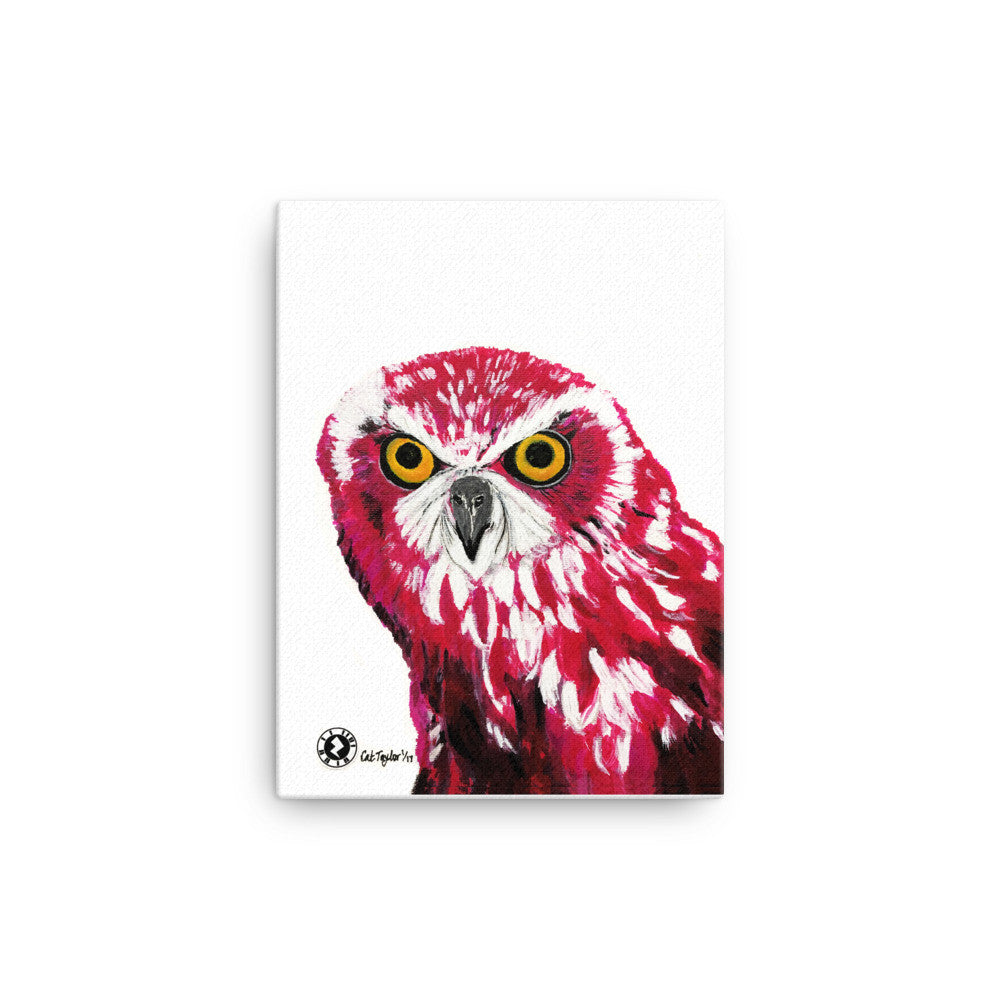 Cerise Owl Kaleidoscope Augmented Reality Canvas Wall Art Print