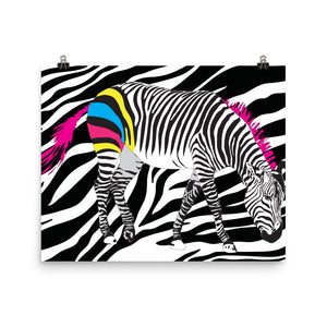 CMYK Zebra on Zebra Print Art Poster