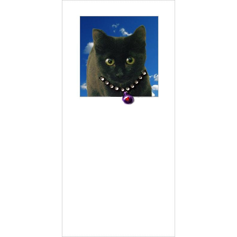 posh paws black cat kitten greeting card