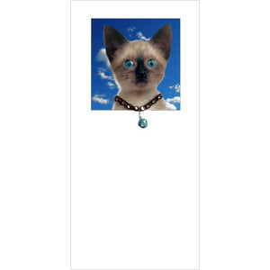 posh pawz siamese cat kitten greeting card