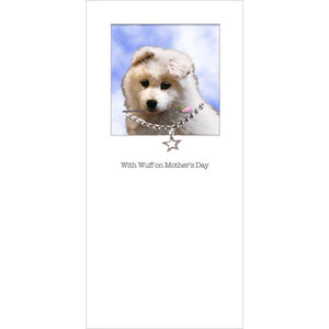 posh pawz samoyed puppy mothers day card