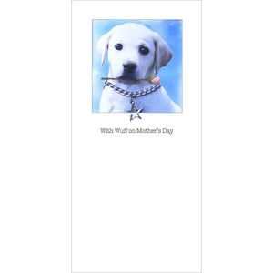 Posh Pawz yellow labrador mothers day card