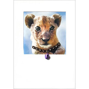 posh pawz lion cub greeting card