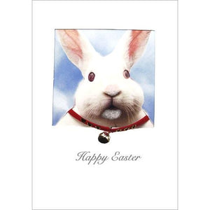 posh paws happy easter rabbit a6