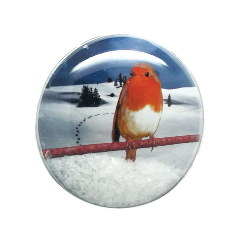Shakers 'n' Movers Christmas Robin SnowDome Greeting Card