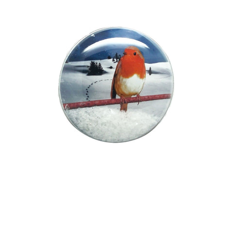 Shakers 'n' Movers Christmas Robin Greeting Card