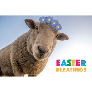 Easter Bleatings Sheep Easter Greeting Card
