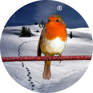 Shakers 'n' Movers Christmas Robin SnowDome Augmented Reality Greetings