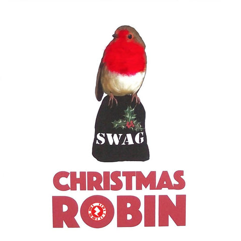 "Christmas Robin ""Swag"" Augmented Reality Square Greeting Card"