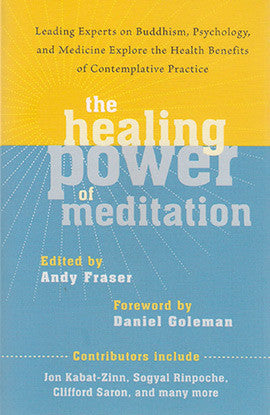 HEALING POWER OF MEDITATION, THE Andy Fraser
