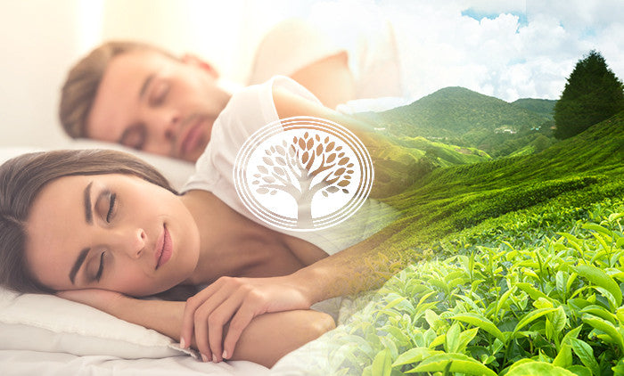 Melatonin – A Natural Supplement for Your Good Night's Sleep