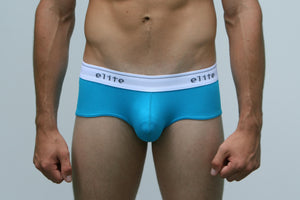 Vienna Brief