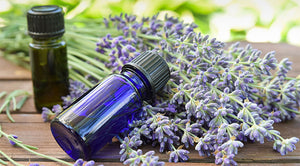 Emotions & Essential Oils Class