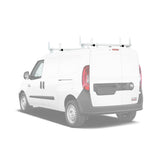 AA-Racks Steel Cargo Van Top Ladder Roof Racks (Fits: RAM ProMaster City 2015-On) (X202-PR(CT)) - AA Products Inc