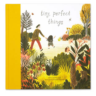 Compendium Tiny Perfect Things Book