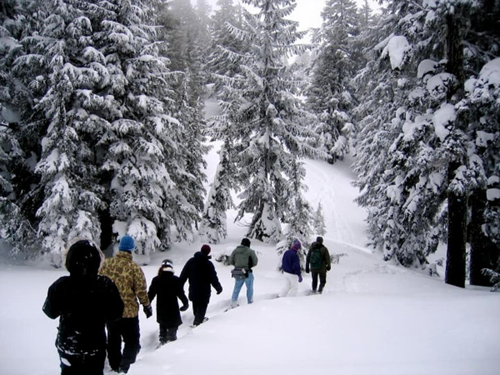 No Skiing, No Problem: 3 Spots for Snowshoeing Around Portland