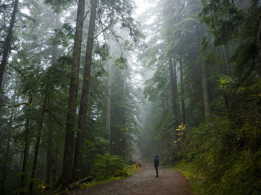 10 Reasons to Love the Rainy Season in Portland