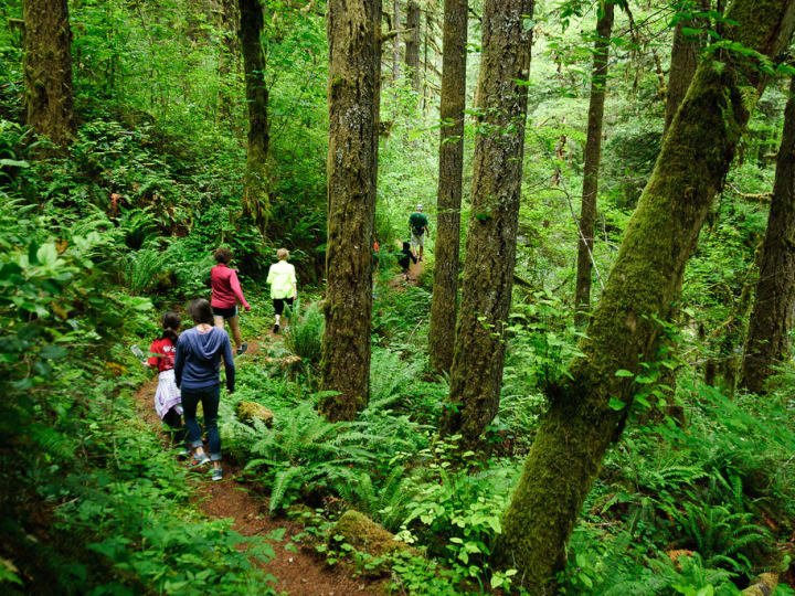 5 Portland Hikes Perfect for the Kids by Grafletics