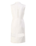 The Sleeveless Sheer Panel Dress