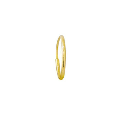 Gold Endless Hoop Earring-Brevard