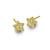 Gold Tiny Center Star Stud Earring-Brevard