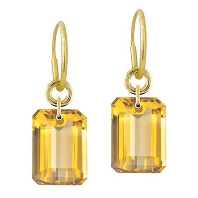 Citrine Jumbo Drilled Stone • Endless Hoop Charm Earring-Brevard