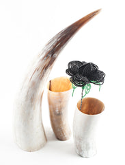 Raw Cow Horn Sculpture