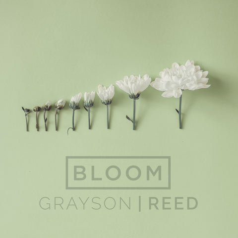 Bloom - Single
