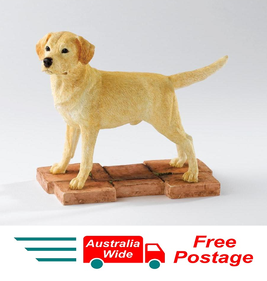 Studio Border Fine Arts The Dog Collection Yellow Labrador