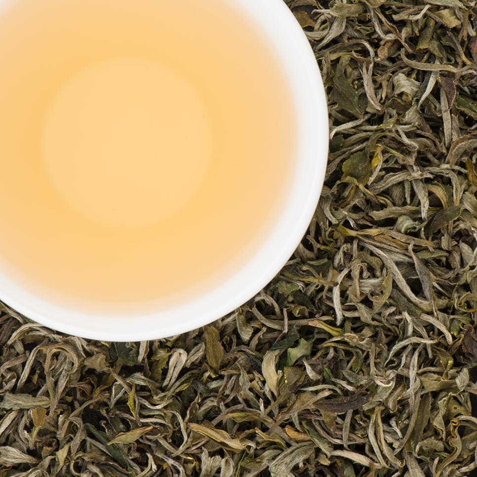 Dhulagiri White Tea - Crisp, Bright, Fresh